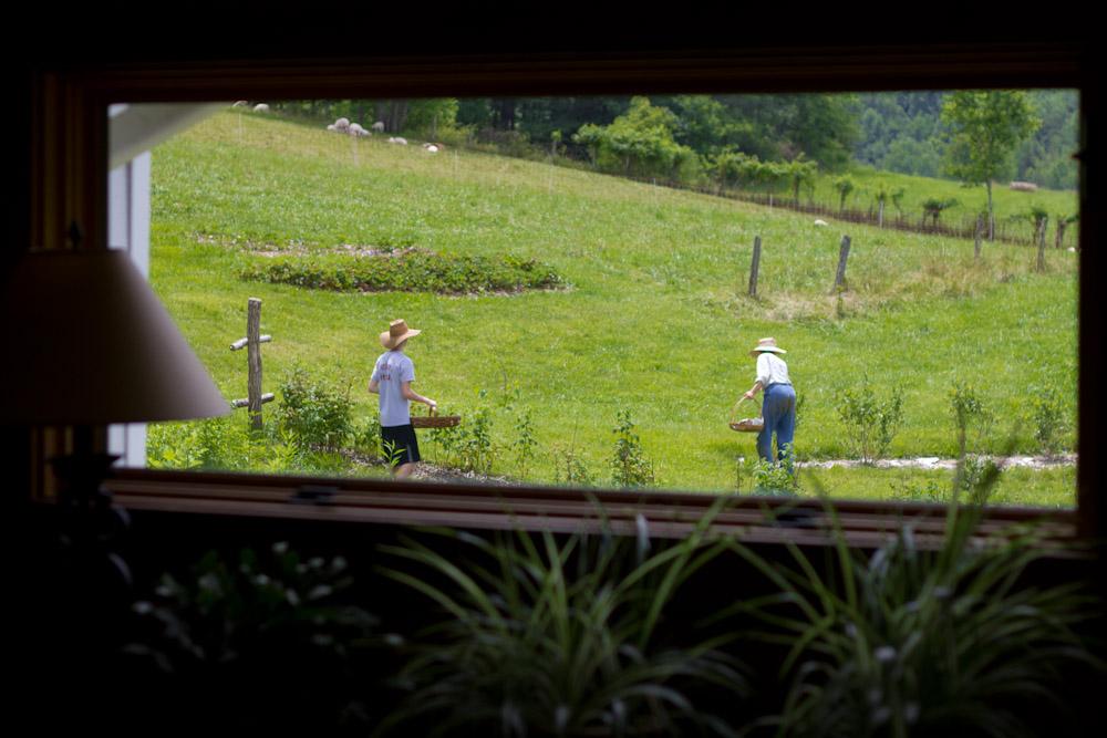 Local Asheville Farmers
